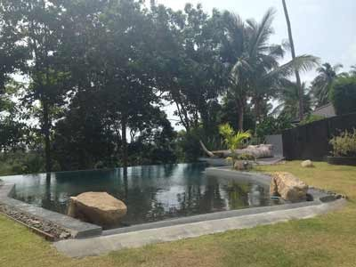 Photo 43 large pool overlooking the greenery and a bar at the feet of the house.