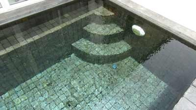 Photo 44 English pool in natural stone tiles on the terrace of the villa cheap.